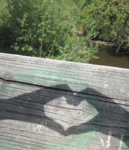 aeva heart2